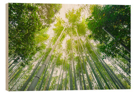 Stampa su legno  Light falls through the bamboo forest