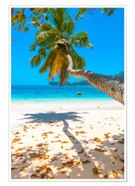 Poster Premium Sea view with palm tree