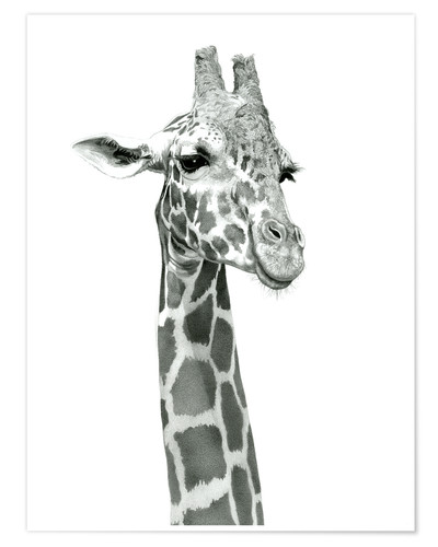 Poster Sketch Of A Smiling Giraffe