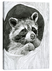 Stampa su tela  Raccoon In A Hollow Tree Sketch - Ashley Verkamp