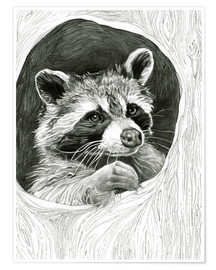 Poster Premium  Raccoon In A Hollow Tree Sketch - Ashley Verkamp