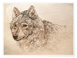 Poster The Gray Wolf