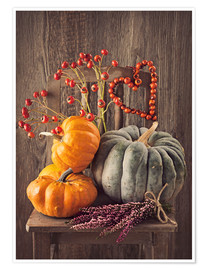 Poster Premium Still life with the pumpkins