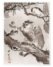 Poster Premium Owl Mocked by Small Birds