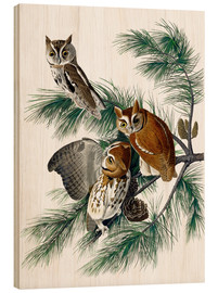 Legno  Three birds - John James Audubon