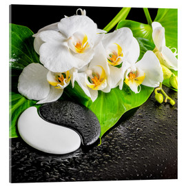 Vetro acrilico  Spa arrangement with white orchid