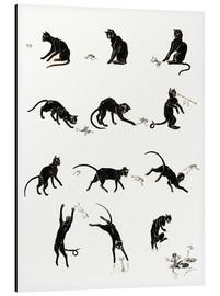 Alluminio Dibond  The cat and the frog - Théophile-Alexandre Steinlen