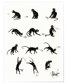 Poster Premium  The cat and the frog - Théophile-Alexandre Steinlen