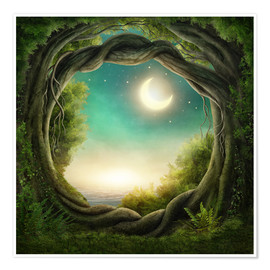 Poster Premium Illustration of a magic forest
