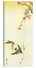 Stampa su tela  Starlings and Cherry Tree - Ohara Koson