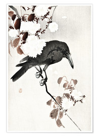 Poster Premium  Crow and Cherry Blossoms - Ohara Koson