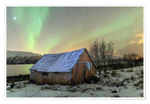 Poster Premium Aurora Borealis on typical Rorbu, Svensby, Norway