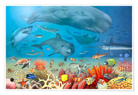 Poster Premium Animals in the sea