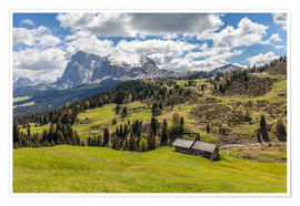Poster Premium Summer on the Alpe di Siusi (South Tyrol, Italy)