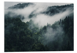 Forex  Mystic forests with fog - Oliver Henze