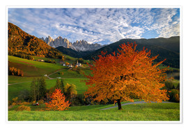 Poster Premium Funes Valley in autumn, Dolomites, South Tyrol, Italy