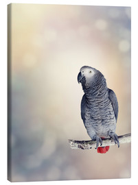 Stampa su tela  African Grey on a branch