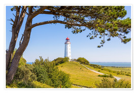 Poster Premium  lighthouse Dornbusch at Hiddensee