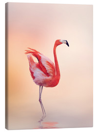 Stampa su tela  Flamingo Feeling