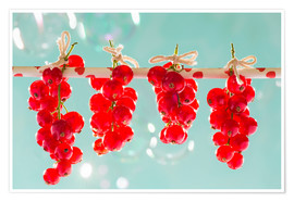 Poster Premium  Red currants full - K&L Food Style