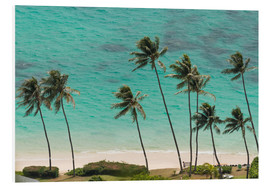 Stampa su PVC  Palm Trees in front of the turquoise Ocean - Markus Ulrich