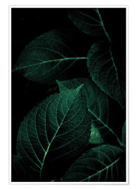 Poster Premium Dark Leaves 1