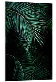 Stampa su schiuma dura  Palm Leaves 9 - Mareike Böhmer Photography