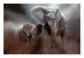 Poster Premium  Elephant with baby - Peter Roder