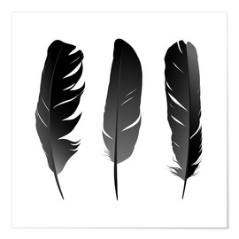 Poster Premium  Three feathers