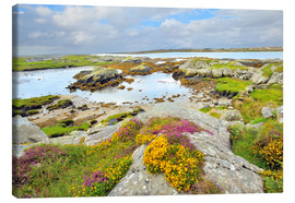 Stampa su tela  Ireland Landscape with wild flowers