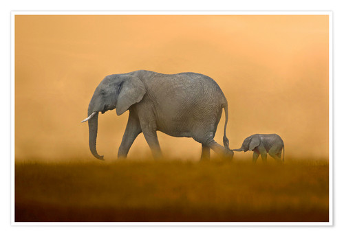 Poster Premium African Elephants mother with baby, Masai Mara