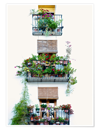 Poster Premium Facade with balconies full of flowers in Valencia