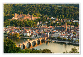 Poster Premium  View of the Old Town of Heidelberg from the Philosophenweg - Michael Valjak