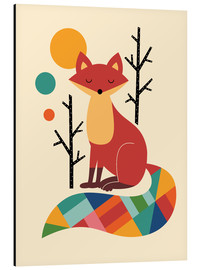 Alluminio Dibond  Rainbow Fox - Andy Westface