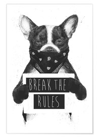 Poster Premium Rebel dog