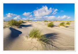Poster Premium Landscape with dunes on the island Amrum