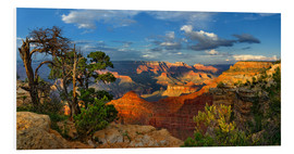 Stampa su schiuma dura  Grand Canyon Idyll - Michael Rucker