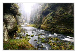 Poster Premium Kamnitz Gorge in the Saxon Switzerland