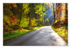 Poster Premium Road through autumn forest