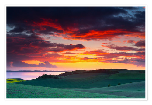 Poster Premium Rolling green hills and lake at sunset