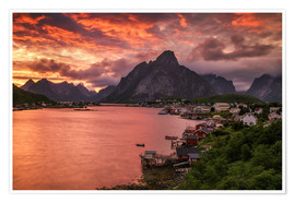 Poster Premium Lofoten sunset in Reine