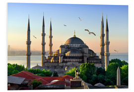 Stampa su PVC  The blue mosque in Istanbul