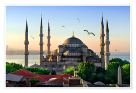 Poster Premium  The blue mosque in Istanbul