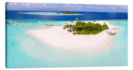 Stampa su tela  Aerial view of island in the Maldives - Matteo Colombo