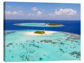 Stampa su tela  Aerial view of islands in the Maldives - Matteo Colombo