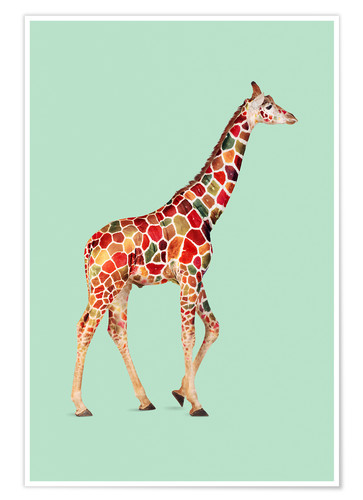 Poster Premium COLORED GIRAFFE