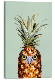 Tela  PINEAPPLE OWL - Jonas Loose