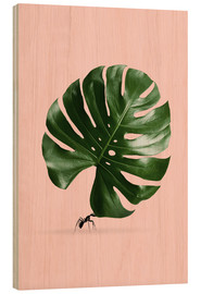 Legno  MONSTERA ANT - Jonas Loose