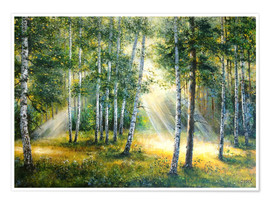 Poster Premium Sunlight in the green forest