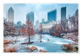 Poster Premium  Winter Central Park, New York - Sascha Kilmer